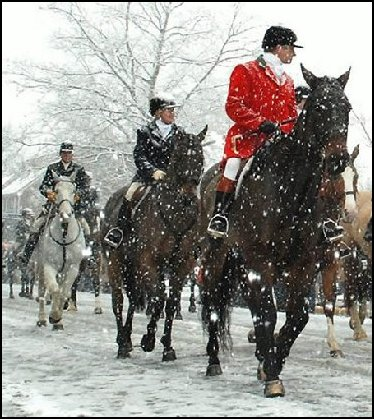 Fox-hunt-snow.jpg