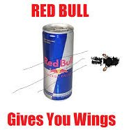 1a-red-bull