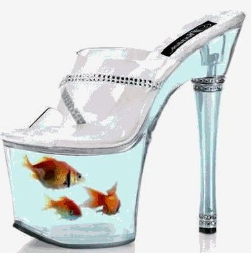 1-a-fish-shoes