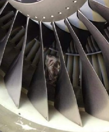 1-a-owl-plane-engine