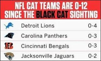 Nfl-blk-cat